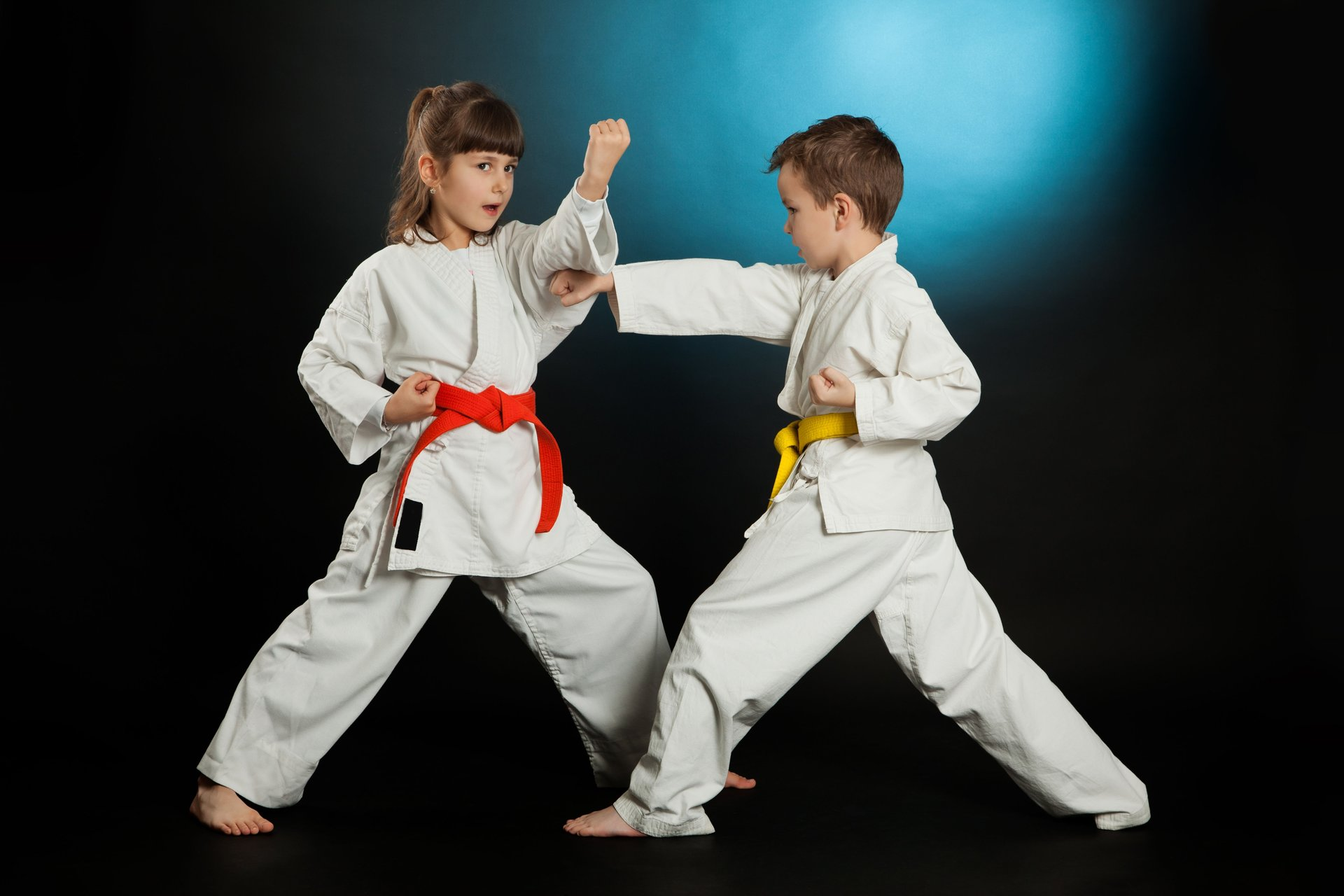 Watch Martial arts video