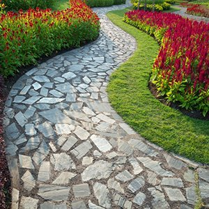 Amazon Landscaping and Design
