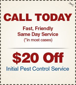 Rutherford Termite And Pest Control Coupon