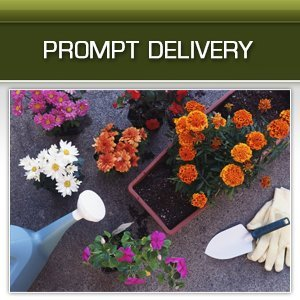 Landscape Materials - Exeter, PA - Wyoming Valley Pallets Inc - Gardening - Prompt Delivery