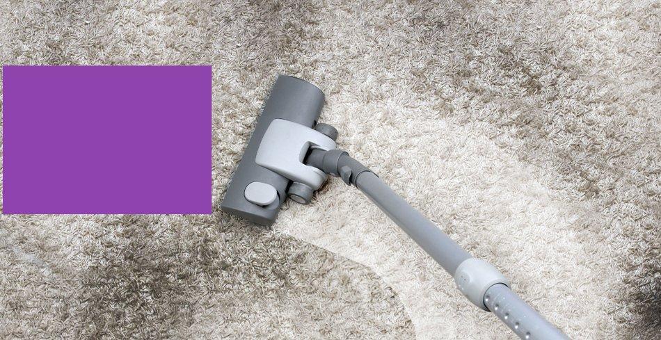 Pet Odor Relief  | Appleton, WI | FiberTech Carpet & Upholstery Cleaning | 920-954-5888