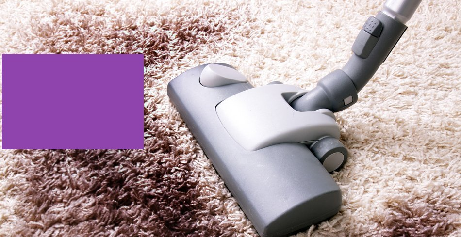 Special Offers  | Appleton, WI | FiberTech Carpet & Upholstery Cleaning | 920-954-5888