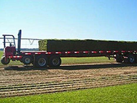 Truck Hauling Turf Grass