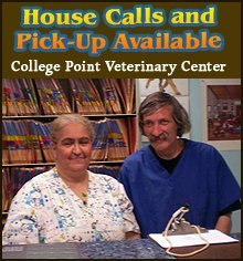 Veterinarian - College Point, NY - College Point Veterinary Center