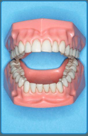 Dentures | Toledo, OH | Kenneth E Endicott DDS | 419-882-8388