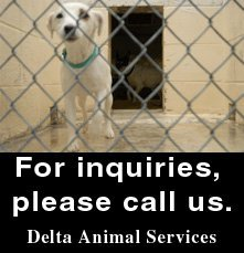 Animal Hospitals - Cleveland, MS - Delta Animal Services