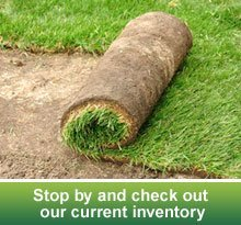 Nursery - Valley City, ND - Riverside Gardens - sod - Stop by and check out our current inventory