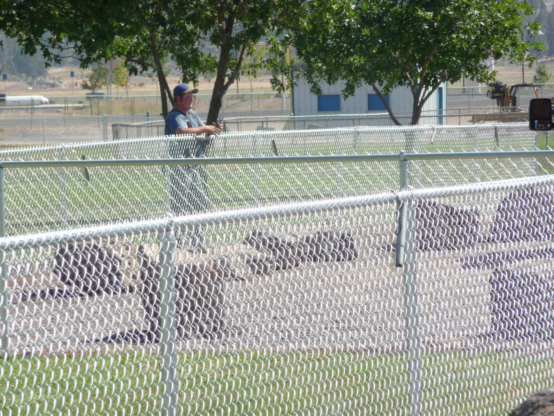 wire fence styles. Chain Link Fencing: Wire Fence Styles