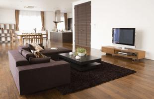 Modern beautiful living room