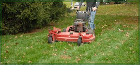 Mowing service