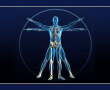 Orthopedics - West Branch, MI - Dr. Patrick Morse