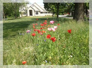 Lawn care | Clive, IA | Shades of Green | (515) 494-4805