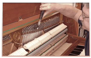 Piano and Organ Repair  | Asheville, NC | Dave Holder - The Piano Man | 828-683-4479