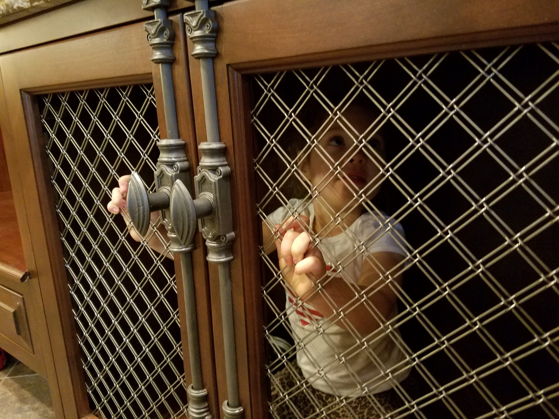Lela in Kennel