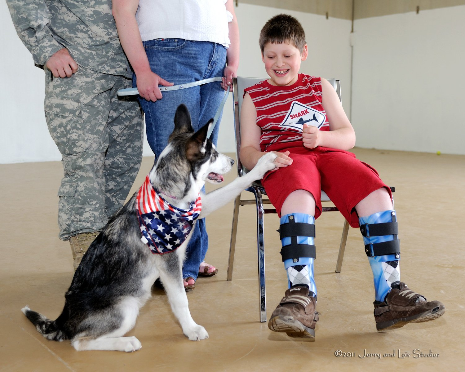 Paws Abilities Total Dog Center Serving All Of Western Washington