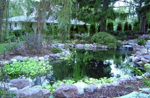 Landscaping with ponds
