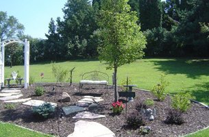 Shrubs and trees services