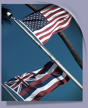 Industrial Flag Poles | Allegan, MI | All Size Fencing, LLC | 269-350-7820