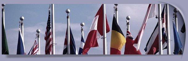 Commercial Flag Poles | Allegan, MI | All Size Fencing, LLC | 269-350-7820