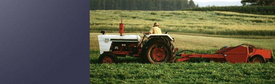 Hardware  | Seminole, TX | Loewen Farm & Lumber | 432-758-6035