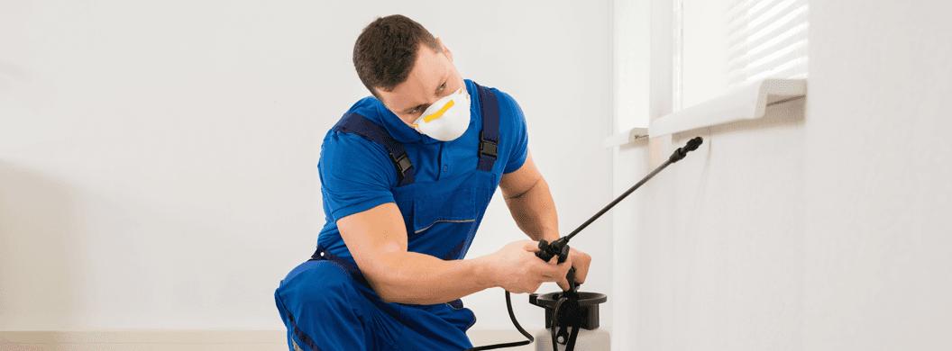 Pest treatment