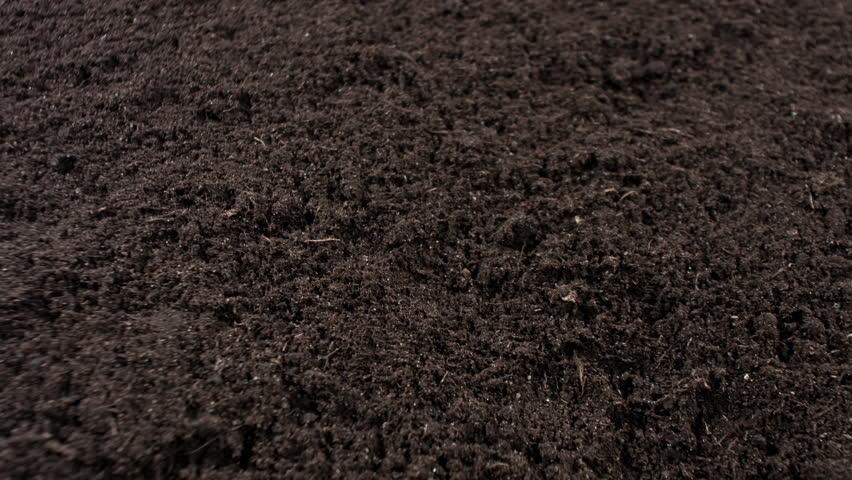 Mushroom Soil, Glen Mills PA