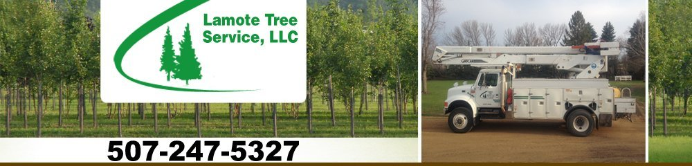 Tree Care - Tyler, MN - Lamote Tree Service, LLC