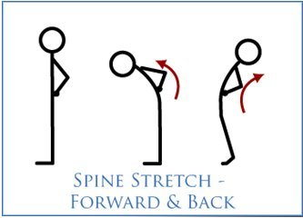 Spine Stretch – Forward & Back