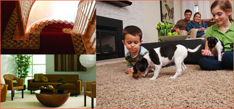 carpet and rug dealers | Kennet Square, PA | Carpets & More  | (610) 444-1499
