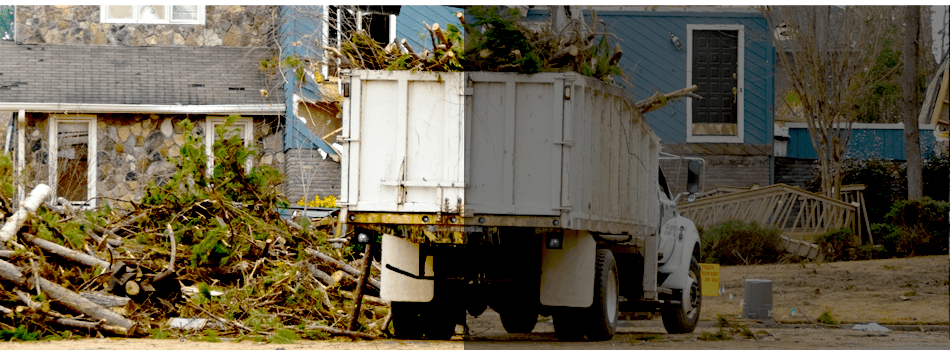 Storm Damage Clean-Up | Crestline, CA | Domon Construction & Tree Service | 909-338-3700