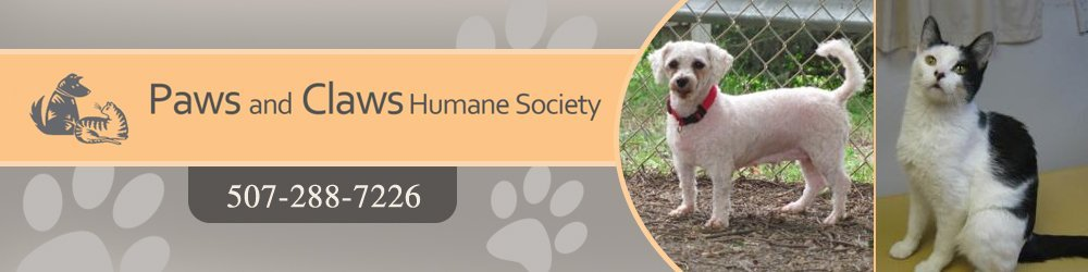 Pet Adoption - Rochester, MN - Paws & Claws Humane Society