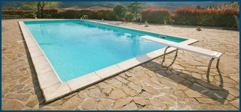 New Fully  Renovated Pool