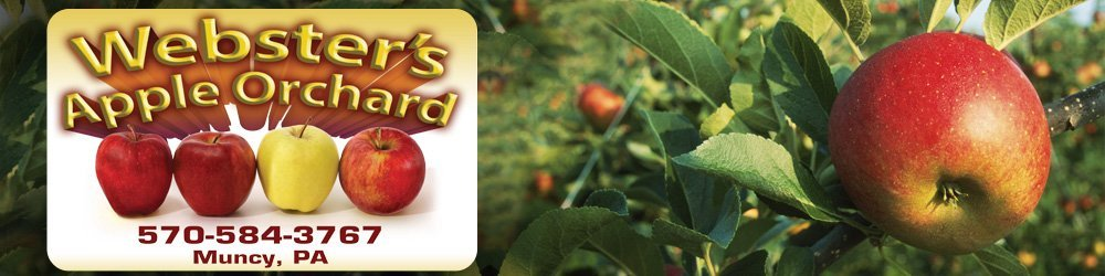Orchard - Muncy, PA  - Webster's Apple Orchard