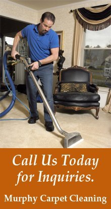 Carpet Cleaning - Bergenfield, NJ - Murphy Carpet Cleaning