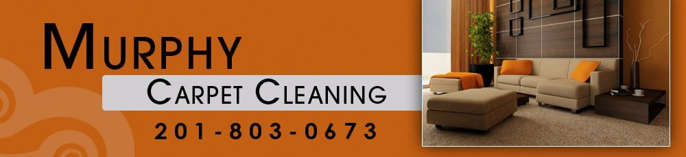 Carpet Cleaning Bergenfield, NJ-Murphy Carpet Cleaning 2018030673