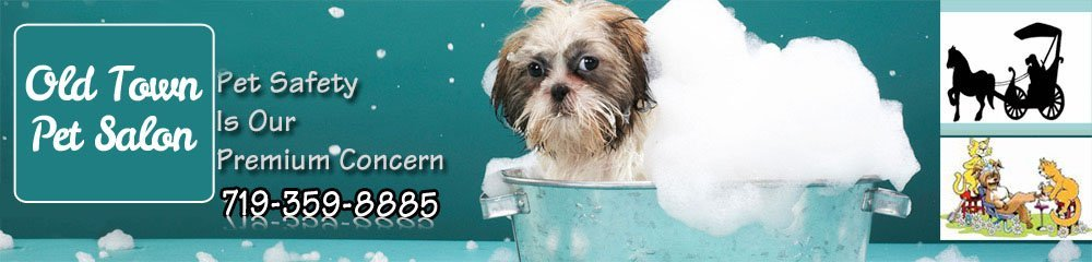 Pet grooming colorado springs co old town pet salon solutioingenieria Choice Image