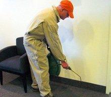 Exterminator - Galesburg, IL - Galesburg Termite & Pest Control