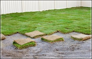 Lawn Care | Des Moines, IA | Duax Lawn Care & Snow Removal | 515-238-9411