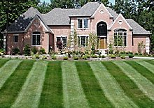 lawn - Coldwater, MI - True Trim Lawn Care LLC