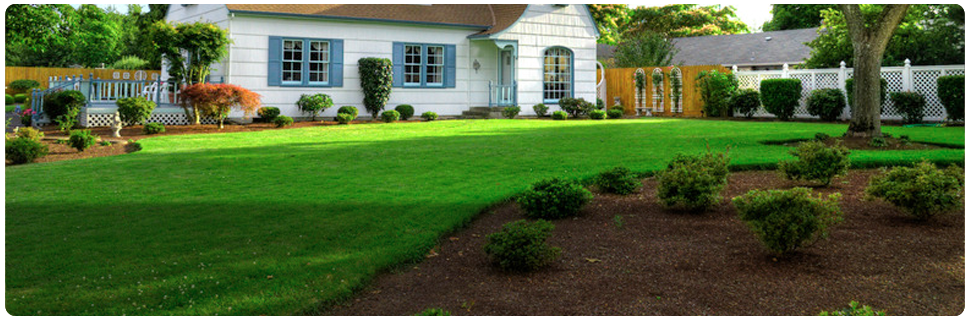 Lawn Care | Newark, OH | Execu-Lawn | 740-745-2040