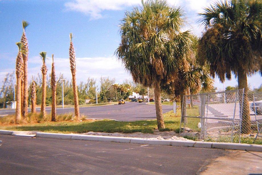 Lake Ida park (after)
