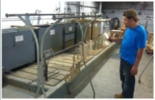 Stenciling | West Hempstead, NY | Multitone Finishing | 516-485-1043