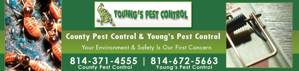 County Pest Control - Dubois, PA | Young's Pest Control - La Jose, PA