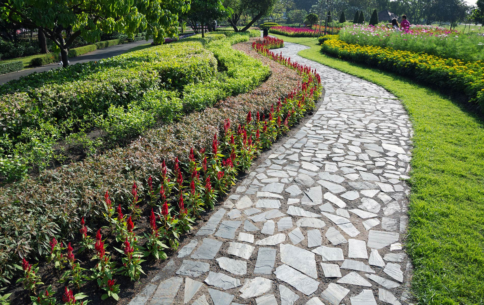 San Diego Landscape Companies Landcare Logic Landscaping Services San Diego  Ca