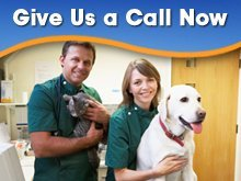 Animal Care Services - Hardin, MT - Animal Care Center