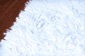 Clean and white furry carpet