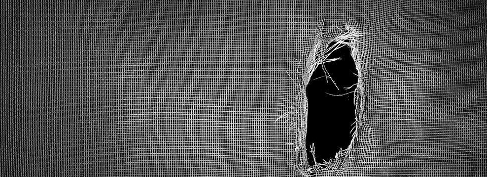 Damage screen enclosure