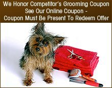 Pet Grooming Service - Temple, TX  - All Breed Grooming By Lori - dog trimming - We Honor Competitor's Grooming Coupon See Our Online Coupon - Coupon Must Be Present To Redeem Offer