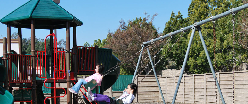 Swings in the play area