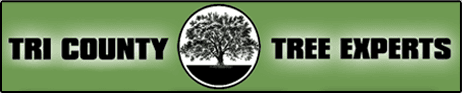 Tri County Tree Experts-Logo